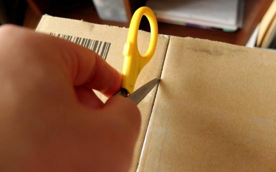 【開封の議①】届いた!嬉しい!Amazonほしい物リストを晒したら、本当にプレゼントがやってきたよ!