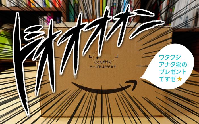 届いた!嬉しい!Amazonほしい物リストを晒したら、本当にプレゼントが届いたよ!